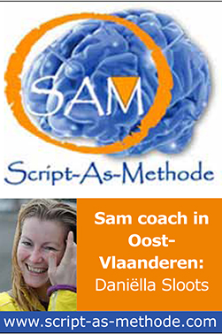 Mini SAM advertentie